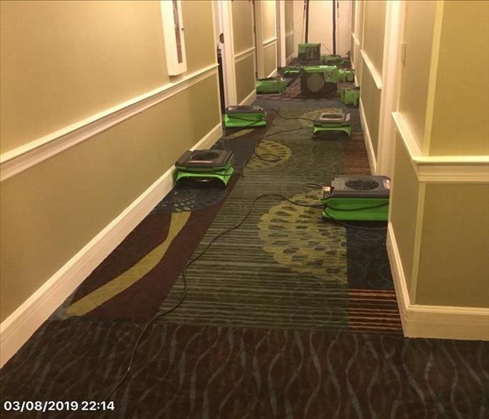 many air movers drying carpet in a hotel corridor
