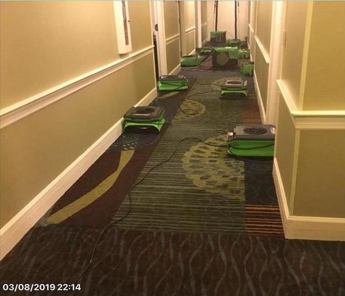 A hallway full of our air movers drying the carpet