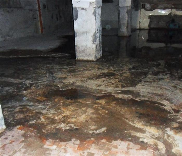 Water Damage SERVPRO Brings the Heavy Treatments Needed for Basement Water Removal in Amherst