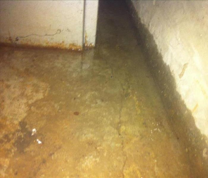Storm Damage Remedying The Wet Basement In Your Milford Home