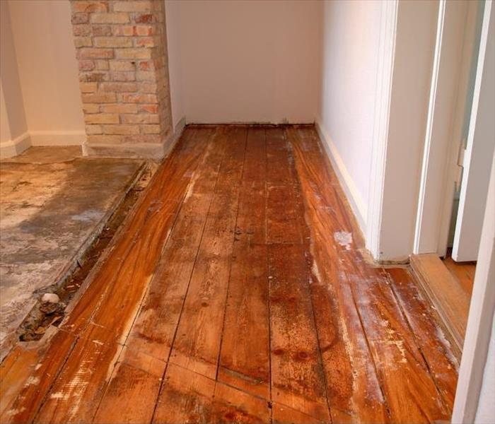 Water Damage Water Removal from Your Wood Flooring in Amherst